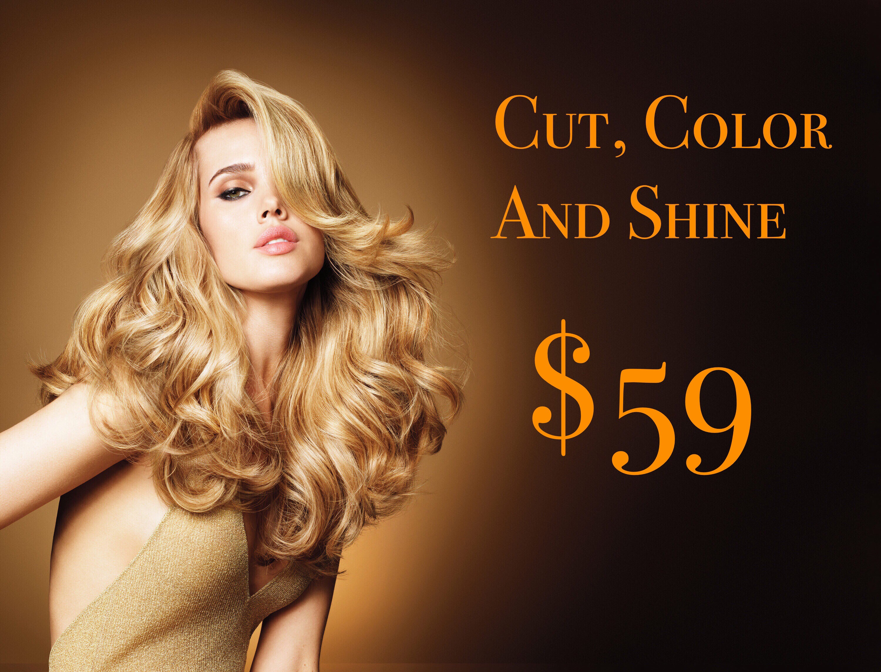 Cut Color And Shine At Hair Color Xperts Inc Hair